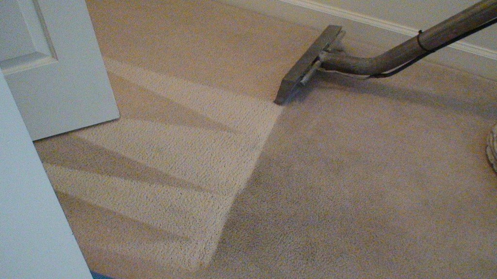 carpet getting cleaned in albany and corvallis oregon